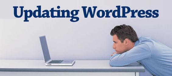 White Paper: Cómo actualizar la versión de tu WordPress