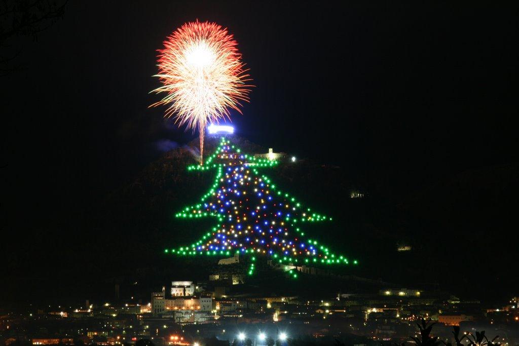 Posiblemente los rboles de navidad m s peculiares de - Arbol tipico de navidad ...