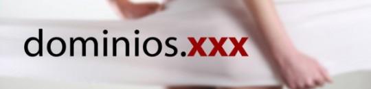 La mayoría de los dominios .XXX no pertenecen a la industria de contenidos para adultos