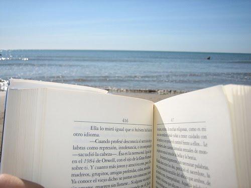 El compañero ideal para el verano: el libro