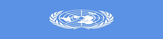 La ONU declara el acceso a Internet como un derecho humano fundamental