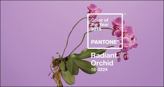 Pantone elige el 'orquídea radiante' como color del 2014. ¡Manda emailings morados!