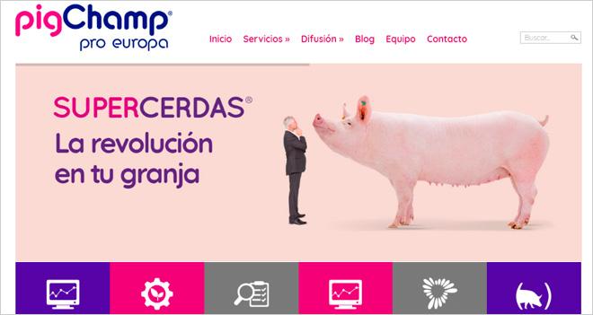 """""""Nuestro reto es seguir construyendo los pilares del Big Pig Data"""", Carlos Piñeiro de PigCHAMP (Caso de cliente)"""