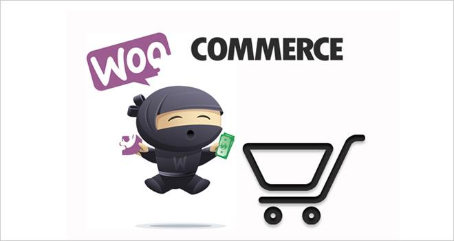 White Paper: Tiendas online en WordPress con plugins como WooCommerce