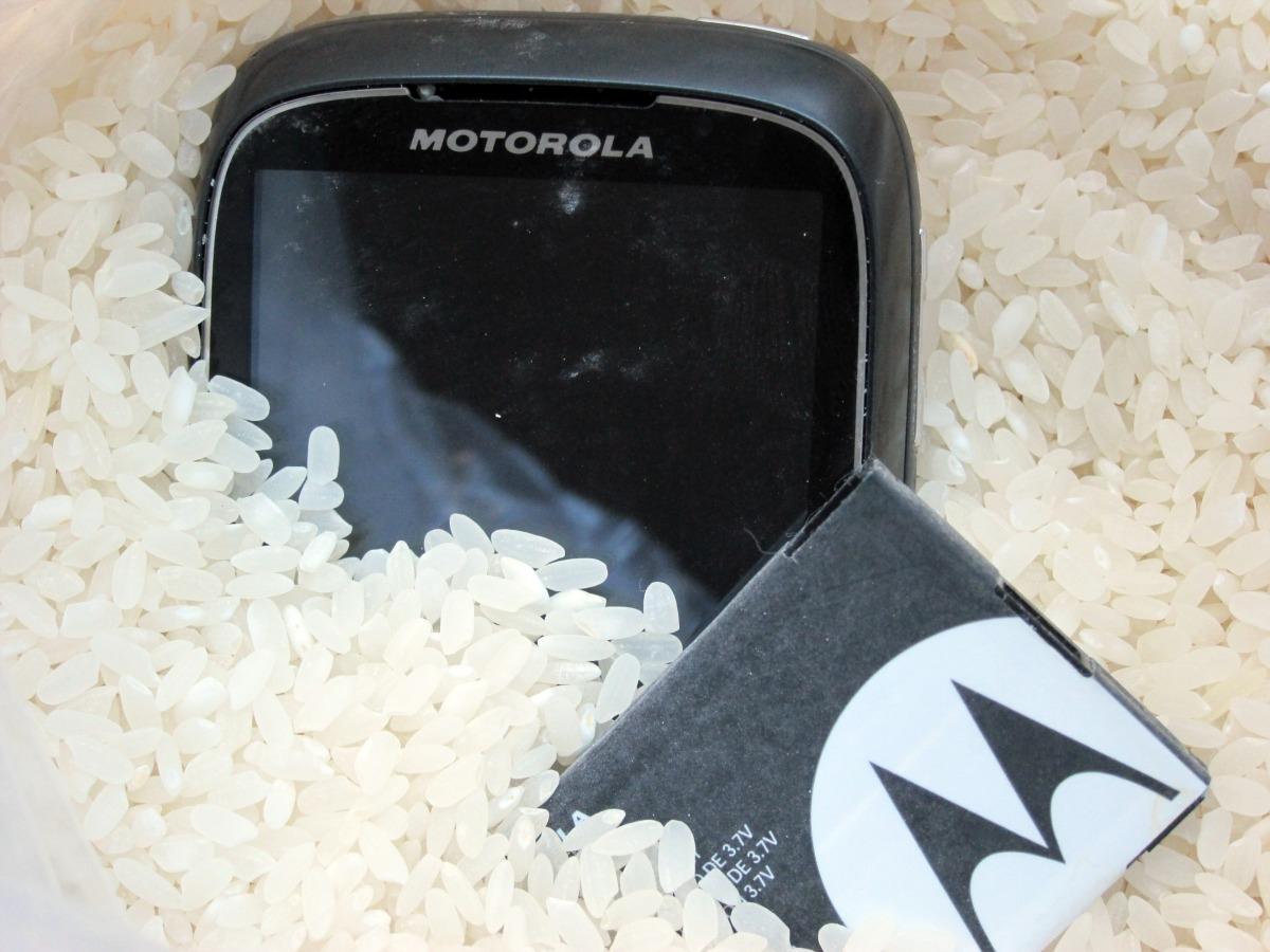 arroz movil - blog hostalia hosting