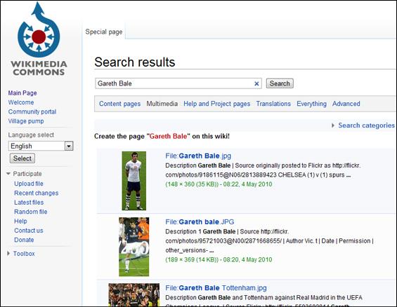 wikimedia-commons-blog-hostalia-hosting
