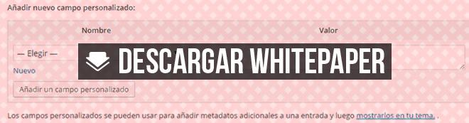 campos-personalizados-sin-plugins-wordpress-white-paper-blog-hostalia-hosting